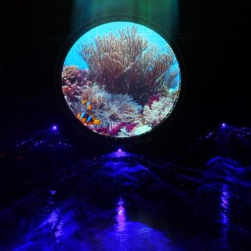 Multimediashow Hortus Haren Lasershow cirkel scherm video