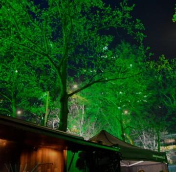 Park De Dommel Eindhoven Uitlichten Bomen Led Opening