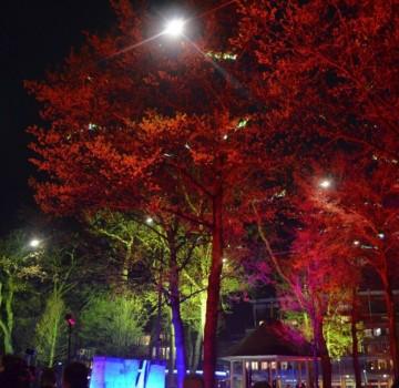 Bomen Uitlichten Architectural Lighting Emmen Opening Marktplein Rood Geel