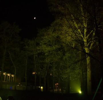 Bomen UitlichtenEmmen
