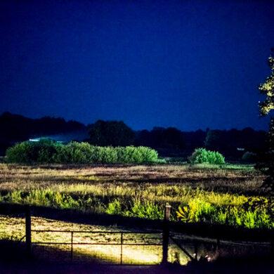 Uitlichten natuurgebied Hunze en Aa