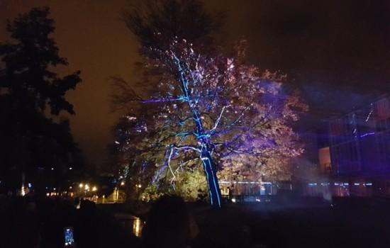 Project _ROOT tijdens Glow in Eindhoven